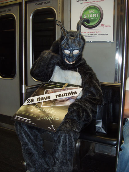bunny-on-train.jpg